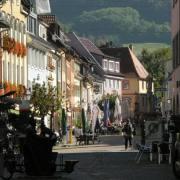Waldkirch 03