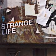 Ulla Kulcke: strange life