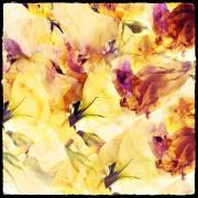 Ulla Kulcke: Blütenchaos